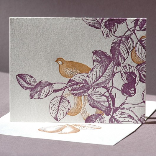 Painted Tongue Studio - Partridge in a Pear Tree, $15/4