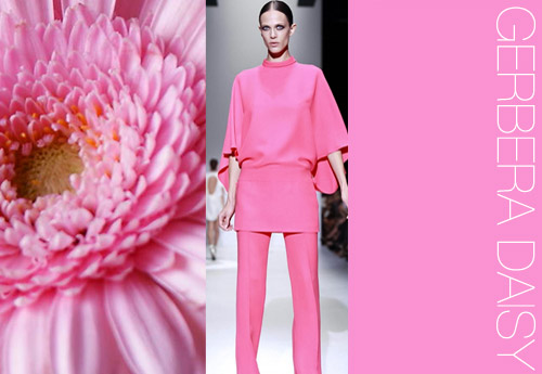 ss14_4 color trend