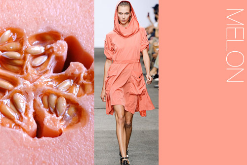 ss14_5 color trend