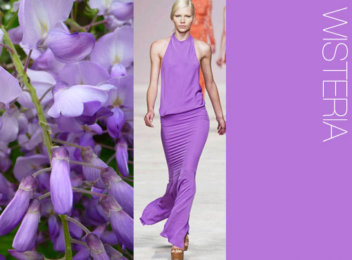 ss14_7 color trend