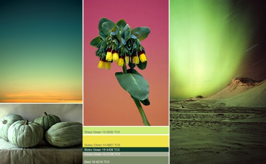 SS13 Color Trend_UB_2