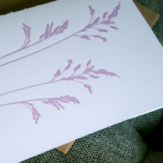 Lavender Grasses Letterpress Note Card, $3