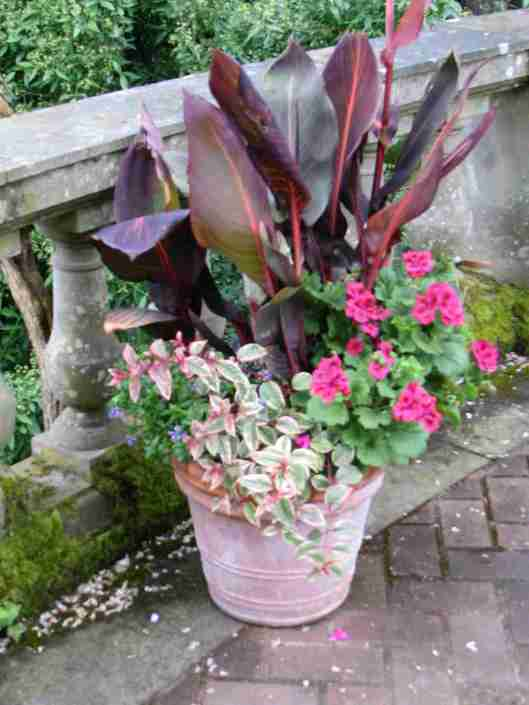 Ceramic Container Garden_2