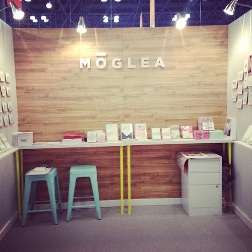 Moglea_NSS Booth