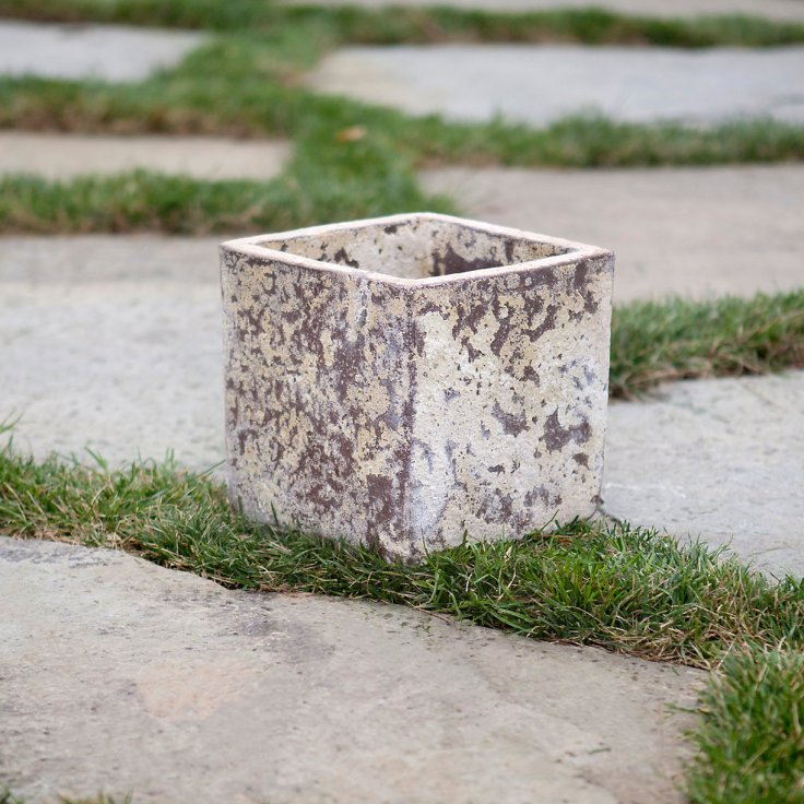 Barnacle Cube Pot, $58.00