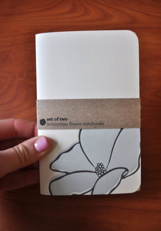 Mint Society - set of 2 letterpress notebooks, $10