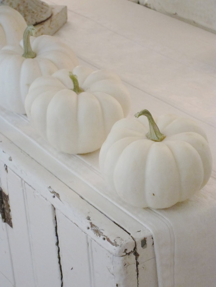 White Pumpkin_13