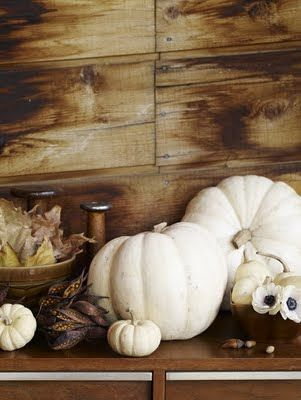 White Pumpkin_15