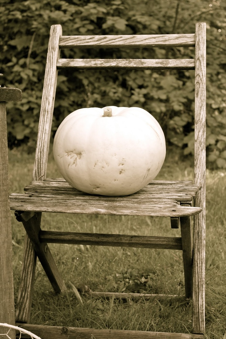 White Pumpkin_2