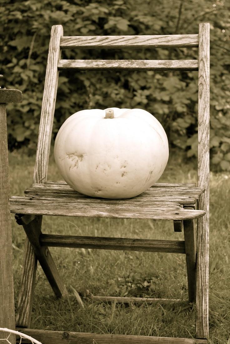 White Pumpkin_2