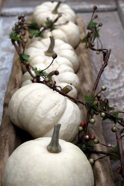 White Pumpkin_3