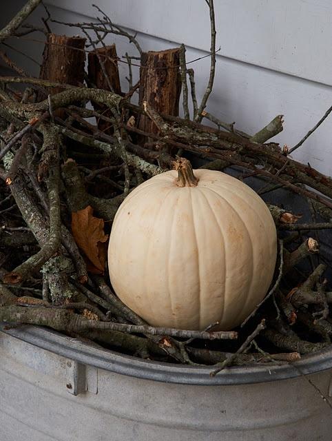 White Pumpkin_7