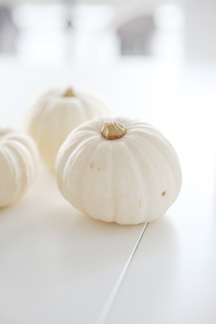 White Pumpkin_9
