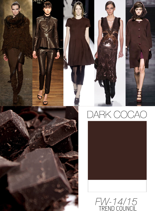 Trend Council FW1415_Color Dark Cocoa