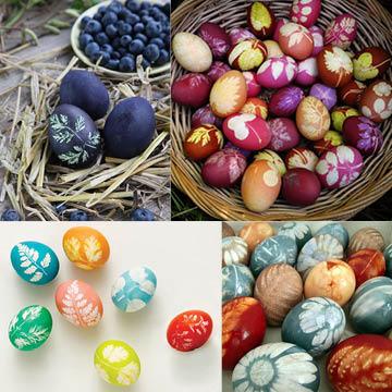 eggs_3