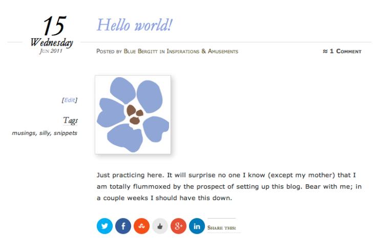 Blue Bergitt Blog Post #1