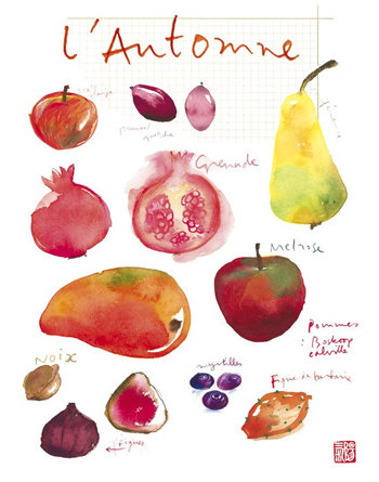 Autumn Fruits - 8x10 print, $37