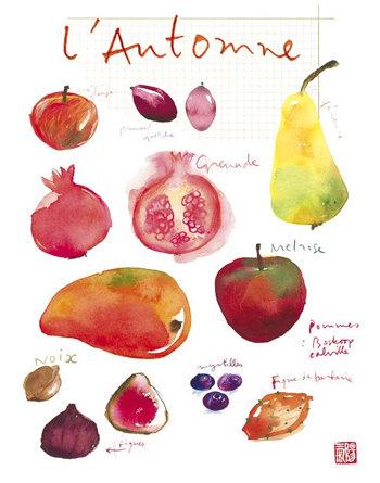 Autumn Fruits - 8x10 print, $37