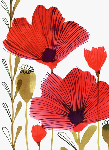 WILD_POPPIES_CARD