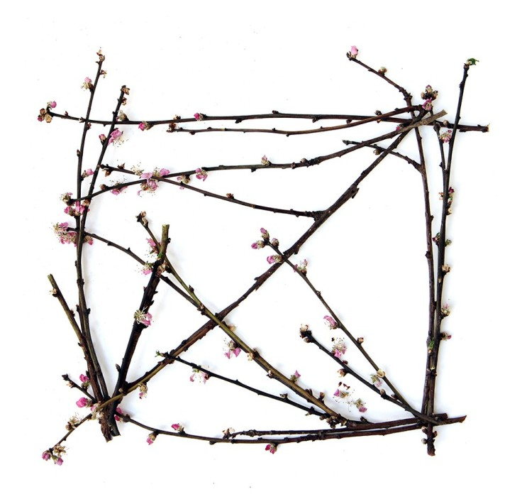 almond-blossom-branch-box