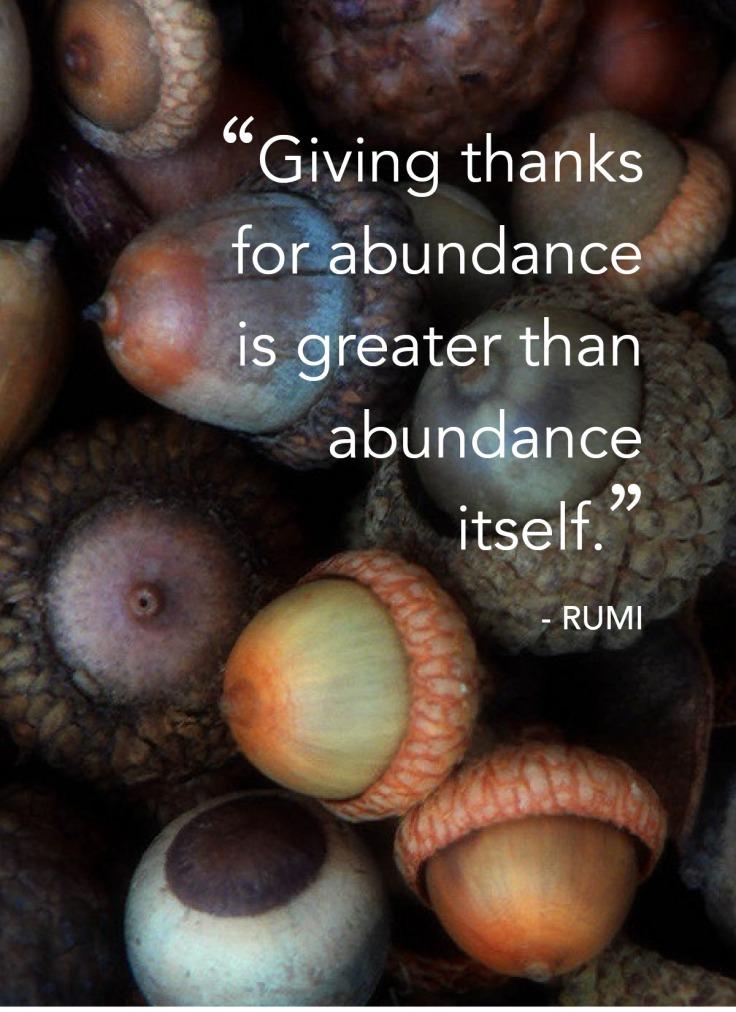 Rumi 1