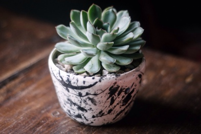 Melody Hillman Ceramics - Small Planter