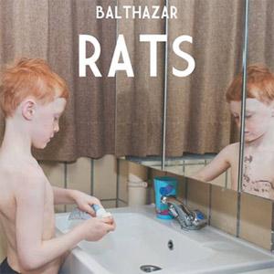 balthazar-rats