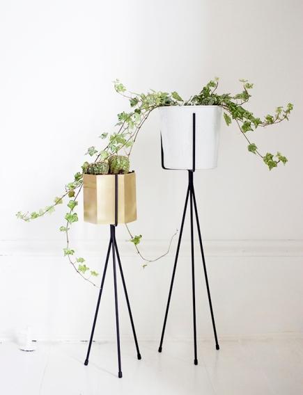 plantstands1.jpg